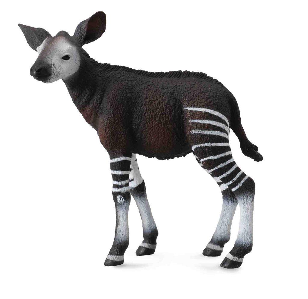 okapi calf CA